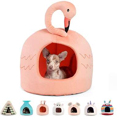 Best Friends by Sheri Novelty Pet Hut
