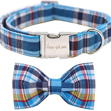 Unique Style Paws Dog Collar with Bow Tie