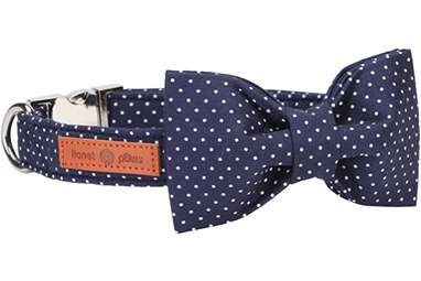 Lionet Paws Dog Collar with Bow Tie