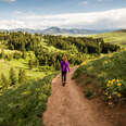 a woman hiking along a mountain pass with wildflowers and rocky mountains in the distance