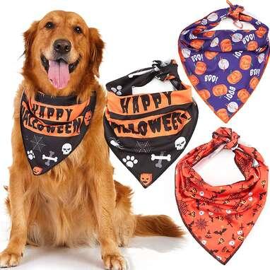 Odi Style Halloween Dog Bandana
