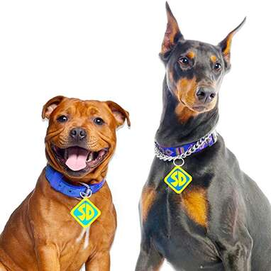 Scooby Doo Collar Tags