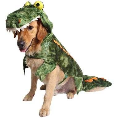 Alligator Dog Costume