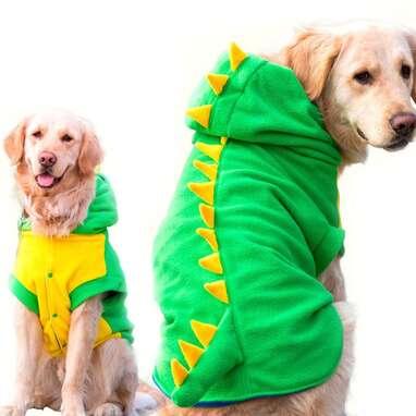 Large Dog Dinosaur Costume