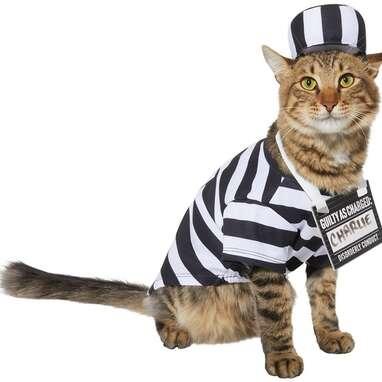 Frisco Prisoner Cat Costume