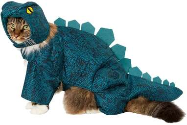 Frisco Stegosaurus Dinosaur Cat Costume