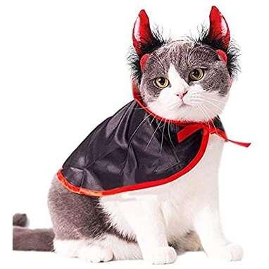 Devil Cat Costume
