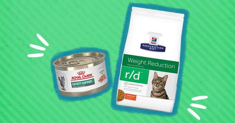 diet cat food
