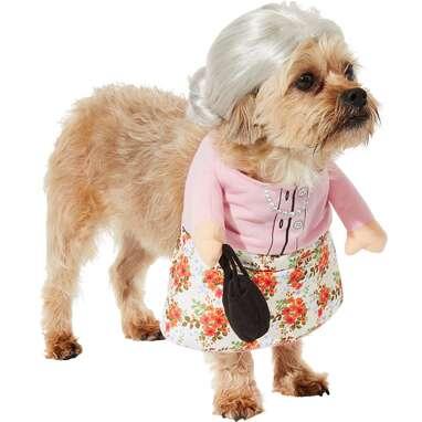 Frisco Front Walking Granny Costume