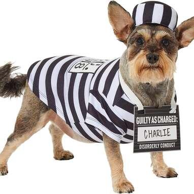 Frisco Prisoner Costume