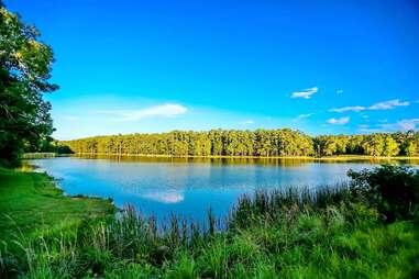 Alabama-Coushatta Tribe Of Texas Lake Tombigbee Campground