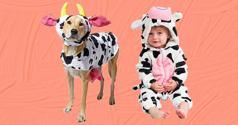 cow dog and baby costumes