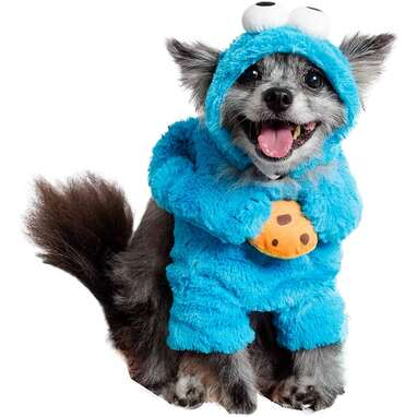Pet Krewe Unleash The Parade Cookie Monster Dog Costume