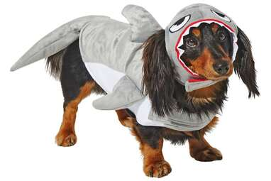 FRISCO Shark Attack Dog & Cat Costume