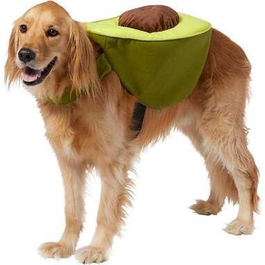 FRISCO Avocado Dog & Cat Costume