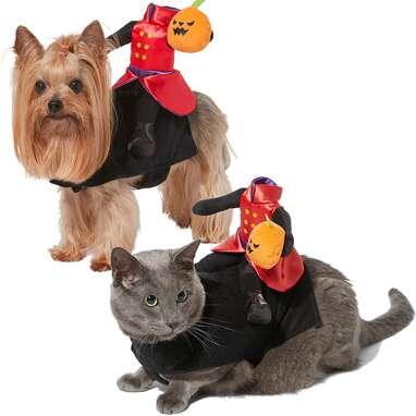 FRISCO Headless Rider Dog & Cat Costume