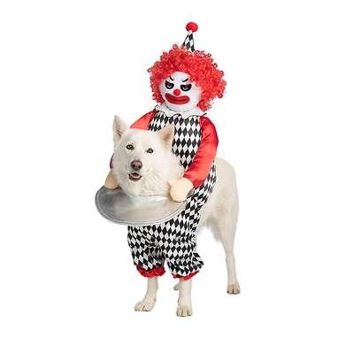 Thrills & Chills Halloween Scary Clown Dog & Cat Costume