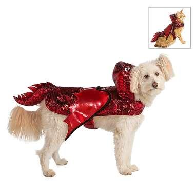 Thrills & Chills Halloween Dragon Dog & Cat Costume