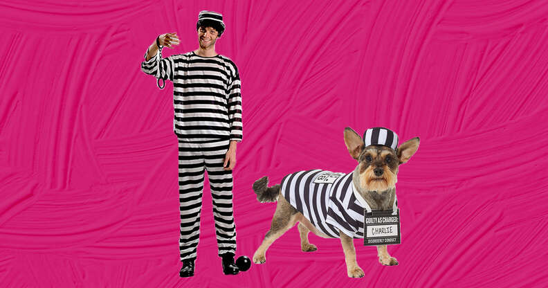 dog and cat prisoners costumes
