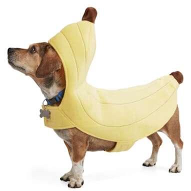 Bootique Banana Split Pet Costume