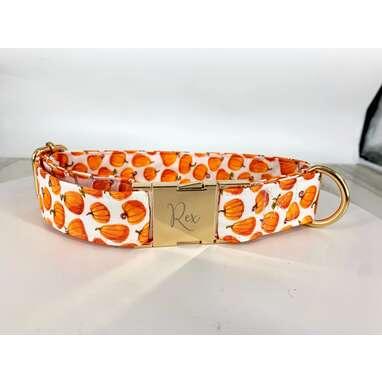 Pumpkin Dog Collar Personalized