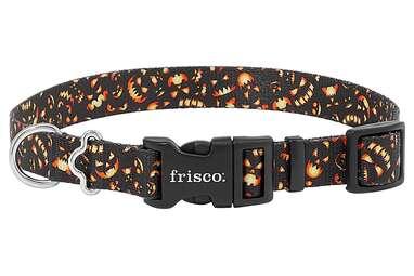 FRISCO Scary Pumpkins Dog Collar