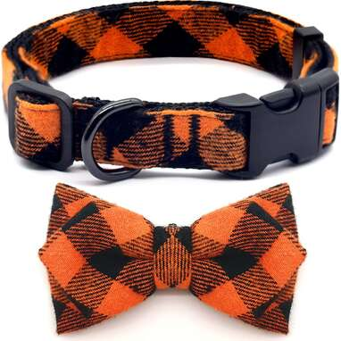 azuza Dog Collar with Removable Bowtie