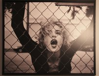 A photograph of a woman behind a fence