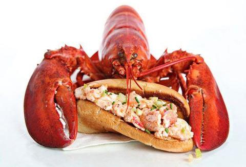 A lobster hanging out behind a lobster roll hoagie