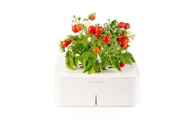The automatic electronic smart-technology planter