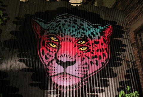 A mural of a four eyed leopard