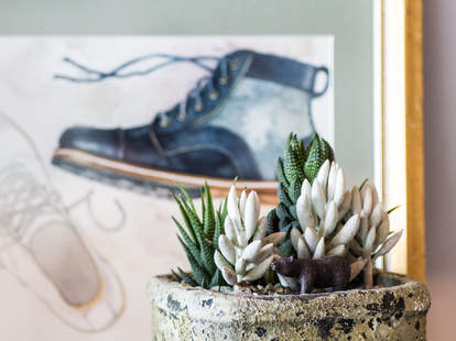 boot poster and succulents at HELM Boots