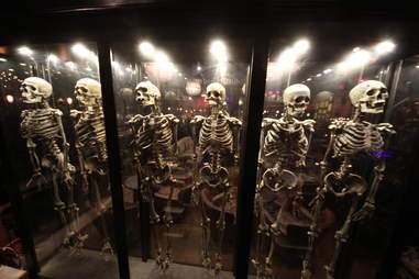 Jekyll & Hyde interior - skeleton