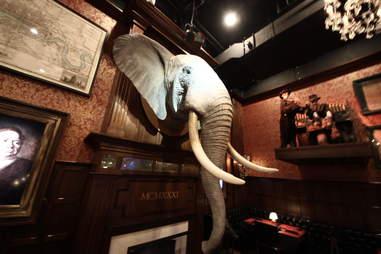 Jekyll & Hyde interior - elephant head