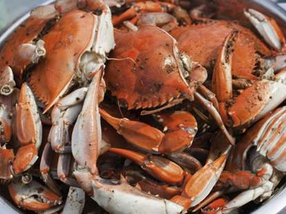 Crab is King