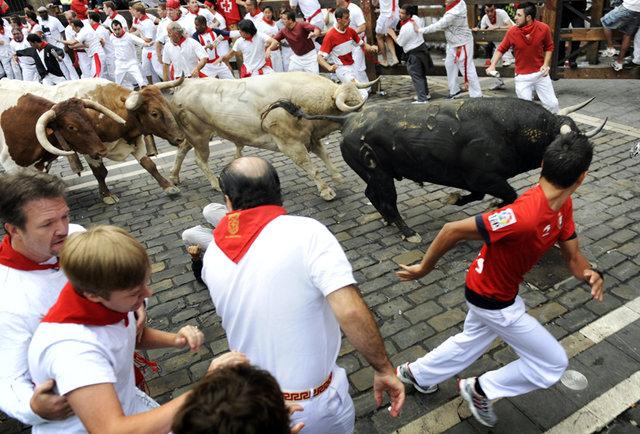 America now has its own terrifying bull runnings!
