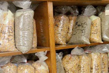 Bags of corn samples at Four Roses distillery