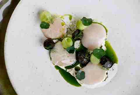 scallops and dill ash at Restaurant Story