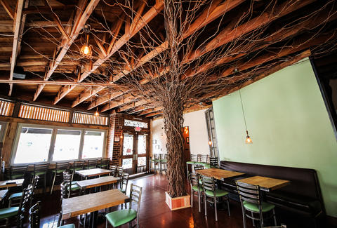 Handmade tree and interior at Bier Garden of Encinitas