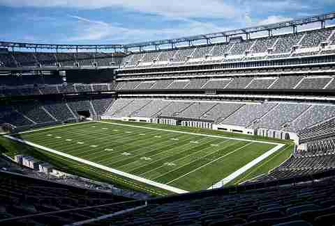 the metlife stadium
