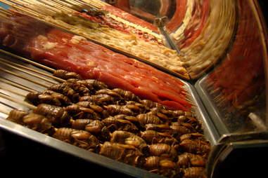 Cicada kebabs
