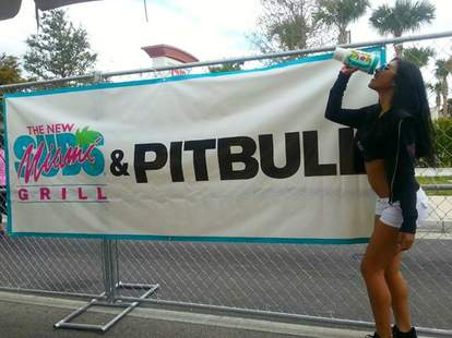 Miami Subs and Pitbull