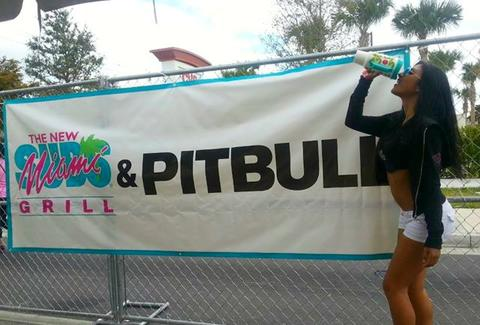 Miami Subs and Pitbull