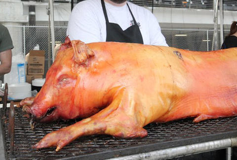 A pig being roasted