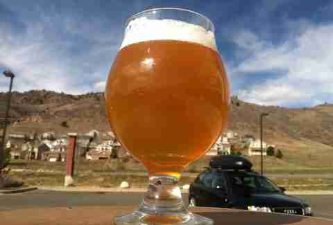 Cannonball Creek Solid Gold Belgian Golden