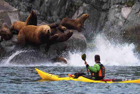 Kayaking on the Bering Sea in Siberia