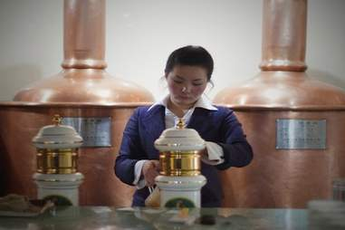 Young Pioneer North Korea tours