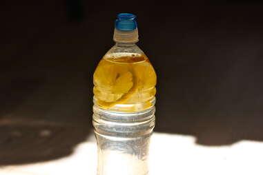 lemonade in a water bottle