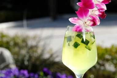 Daylight -- Cucumber Cooler