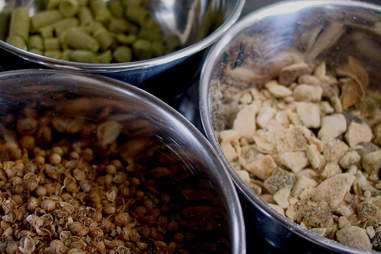 Barley, hops, and beer ingredients